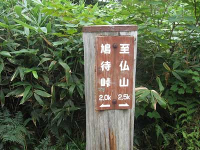 shibutu_8.jpg