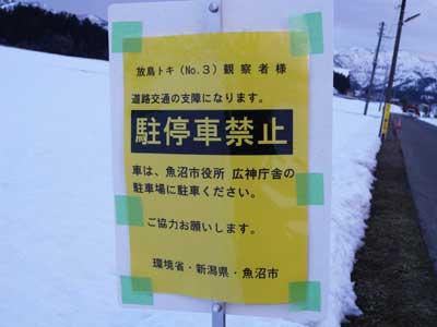 toki_400_1.jpg